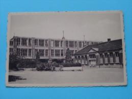 Montegnée Ecole Fleurie Centre ( De Vogelaere ) Anno 19?? ( Zie Foto Details ) !! - Saint-Nicolas