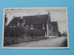 Momalle - Ferme Manjean () Anno 19?? ( Zie Foto Details ) !! - Remicourt