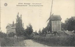 Montaigu  -   Coin Pittoresque;  TOPKAART! 1921  Naar  Viane DE MOLEN - Scherpenheuvel-Zichem