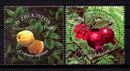 Uzbekistan 2015 /  Fruits MNH Frutas Frucht / C10922   31 - Frutas