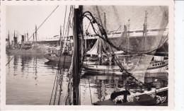 LORIENT - Le Port De Pêche - Gaby N°42 (GTv-c735) Neuve - Bordure Blanche - Lorient