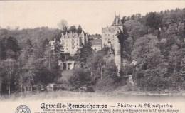 AYWAILLE > REMOUCHAMPS > Château De Montjardin - Aywaille