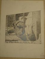 Dessin Au Crayon 1950-illustrateur-chiens Abandonnés  (1) - Dibujos