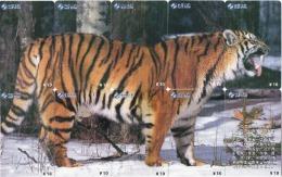 10  Télécartes Puzzle Tigre Animal Phonecard  Telefonkarte P02 - Puzzles