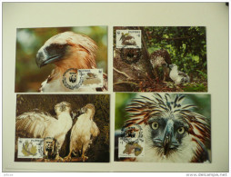 WWF Philippines Philippine Pilipinas Eagle Adler Birds Prey Greivögel 1991 4 CM MC MK Maxi Maximum Card Carte Maxicard - Maximum Cards