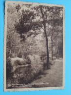 REDEMPTORISTENCOLLEGE Uit Den STUDENTENTUIN / Anno 1943 ( Zie Foto Voor Details ) !! - Essen