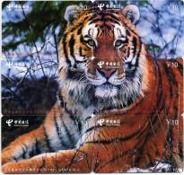 Puzzle Tigre Animal Télécarte  Phonecard  Telefonkarte P14 - Puzzles