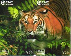 Puzzle Tigre Animal Félin Télécarte  Phonecard  Telefonkarte P61 - Puzzles