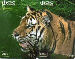 Puzzle Tigre Animal Félin Télécarte  Phonecard  Telefonkarte P62 - Puzzles