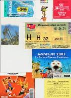 Lot De Divers Tickets D´entrées Parcs D´attractions, Parcs Verts... Voir Détails - Tickets - Vouchers