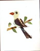 Kaart - Vogel Gemaakt Van Vleugels Vlinders - Loisirs Créatifs