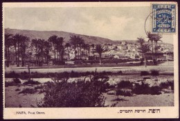 Israel / Palestine Postcard View Of Haifa PALM GROVE With British Mandat EEF Stamp - Publisher: Eliahu Bros. No. 124 - Palestine