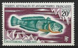 "TAAF YT 36 "" Poissons "" 1971 Neuf** - Terres Australes Et Antarctiques Françaises (TAAF)"