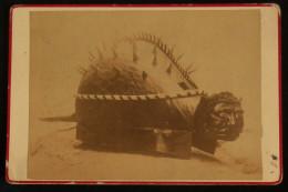 ( Bouches-du-Rhône TARASCON) Photo Originale LA TARASQUE G. BLANCHIN Fils à Tarascon + La Tarasque De Louis Dumont - Lieux