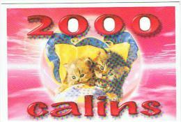CHATS ANNEE 2000 CARTE A TROUS - Katten