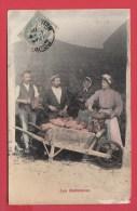 CPA  Fantaisie * 1906 * Les Betteraves * Culture De La Betterave Sucrière _ ANIMATION ****Cf. Scan Recto Verso********** - Cultivation