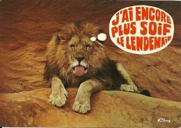 Lion Leeuw / Parc Zoologique Des Condeminals Romanèche-Thorins - Lions