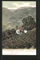 Cartolina Lajen, Vogelweiderhof, Geburtsstätte Walther's Von Der Vogelweide - Italie
