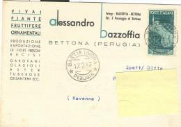 BAZZOFFIA ALESSANDRO,VIVAI-PIANTE,BETTONA,PERUGIA, CARTOLINA  VIAGGIATA 1947,POSTE BASTIA UMBRA,MARINARE £.3, - Perugia