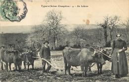 TYPES ET SCENES CHAMPETRES AU LABOUR - France