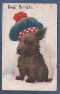 SCOTLAND - CP ILLUSTRATEUR A IDENTIFIER - JOLI CHIEN - REAL SCOTCH - M. & L. LTD N° 271 - CIRCULEE 1918 - Scotland