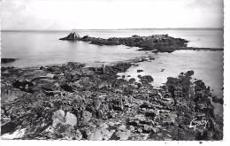 LOCQUIREC - L'Ile Verte, à L'horizon Trébeurden - Locquirec