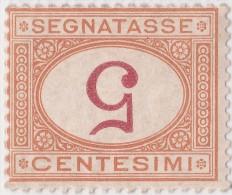 SI53D Italia Italy Segnatasse Regno Emesso Il 1870  5 C. MLH Ocra Cifra Entro Un Ovale CAPOVOLTA - Usati