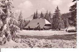 """CP UNTERSTMATT/SCHWARWALD - Kiosk """"Grobe Tanne"""" - Familie Birk - Hoechenschwand"""