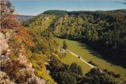 HAN Sur Lesse - Réserve Naturelle D'Animaux Sauvages - Panorama, Vu Des Rochers De Faule - Autres