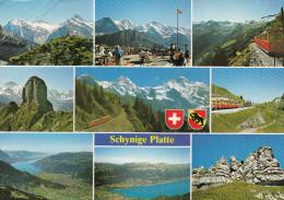 Schweiz Berner Oberland  Schynige Platte 2000m - BE Berne