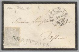 Heimat ZH Oberwetzikon 1873-02-05 Langstempel Gr.30 Auf Brief Nach Uster Zu#28 Sitz.H. - 1862-1881 Helvetia Seduta (dentellati)