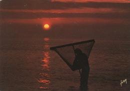 La Dernière Pêche Du Soir (n°10/2500 Yvon Neuve) Coucher De Soleil Crevette Pousseux - Pesca