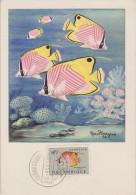 Carte Maximum, Poissons, Plasmarine, Publicité, 1955, Poisson Papillon, Timbre, Mozambique, Mocambique, Chaetodon Aurig. - Mozambique