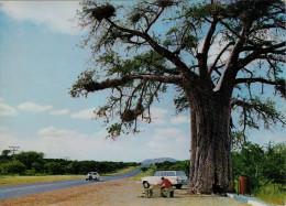 MESSINA--ORA  MUSINA    GREAT NORTH ROAD NEAR MESSINA N. TVL.      (NUOVA) - Sud Africa