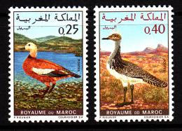 Morocco MNH Scott #233-#234 Set Of 2 Ruddy Shelduck, Houbara Bustard - Campaign To Save Moroccan Wildlife - Morocco (1956-...)