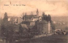 Vielsalm     Un Coup Du Village          A 593 - Vielsalm