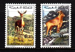 Morocco MNH Scott #268-#269 Set Of 2 Mountain Gazelle, Barbary Sheep - Maroc (1956-...)