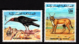 Morocco MNH Scott #344-#345 Set Of 2 Bald Ibis, Persian Lynx - Morocco (1956-...)