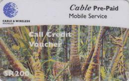 Télécarte Pour Téléphone Portable / Afrique  - SEYCHELLES / Forêt Forest - Africa Mobile Phone Prepaid Phonecard 5 - Seychelles