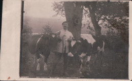 CARTE-PHOTO CHATEL-CHEHERY Soldat Allemand Avec 2 Vaches 1915 - Other Municipalities