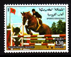 Morocco MNH Scott #525 1.30d Equestrian Sports - Maroc (1956-...)
