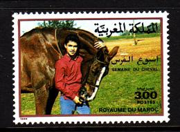 Morocco MNH Scott #658 3d Horse Week - Maroc (1956-...)