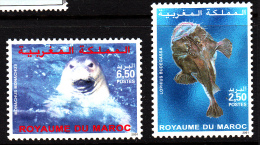 Morocco MNH Scott #904-#905 Set Of 2 Marine Life: Lophius Budegassa, Monachus Monachus - Maroc (1956-...)