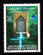 Morocco MNH Scott #937 6.50d International Year Of Fresh Water - Maroc (1956-...)