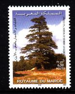 Morocco MNH Scott #918 6.50d Cedar Tree - Maroc (1956-...)