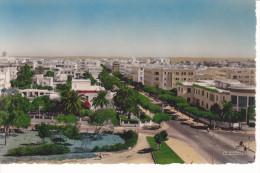 RABAT. MAROC. Office Chérifien Des Phosphates Et Avenue Urbain Blanc. - Rabat