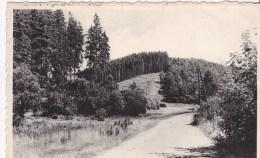 MANDERFELD > Vallée Du Franckenbach - Bullange - Buellingen