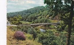 RENSIWEZ > La Vallée E L'Ourthe - Le Pont De Rensiwez