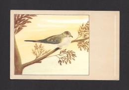 ANIMALS - ANIMAUX - OISEAUX - BIRDS - Diamantduifje - Colombe Diamant - Sluis Birdfood - Niet Verzonden -  PAR P. SLUIS - Oiseaux