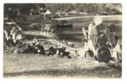 Cp, 20(2A), Ajaccio, Plage Du Seudo, Voyagée 1936 - Ajaccio
